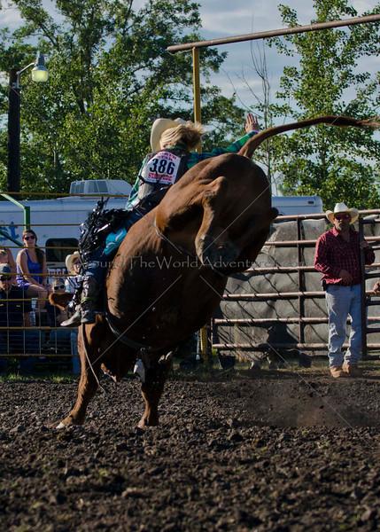 Bulls Friday 2012