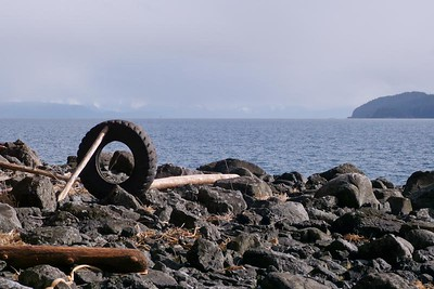 Look What We Found April 2013, Cynthia Meyer, Chichagof Island, Alaska