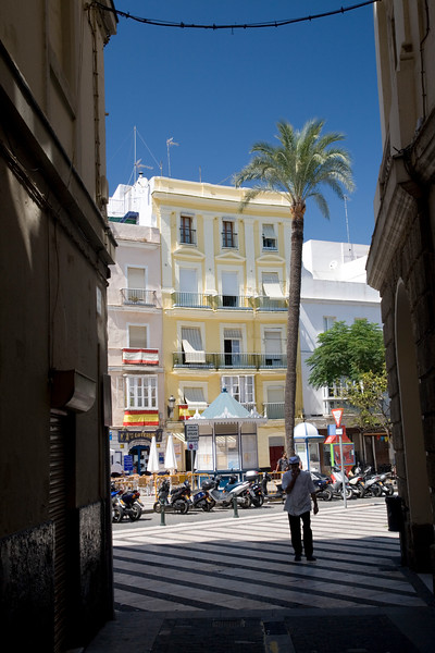 Colorful buildings and palm tree in Cadiz city center, Spain. Cadiz heart area is a superb sample of 18th century city, very well preserved.