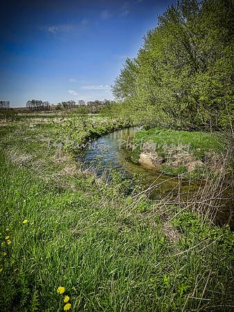 Franklin Park State Natural Area 2020