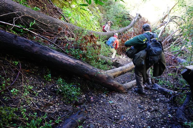20160218065-Gabrielino Trail Scouting.JPG
