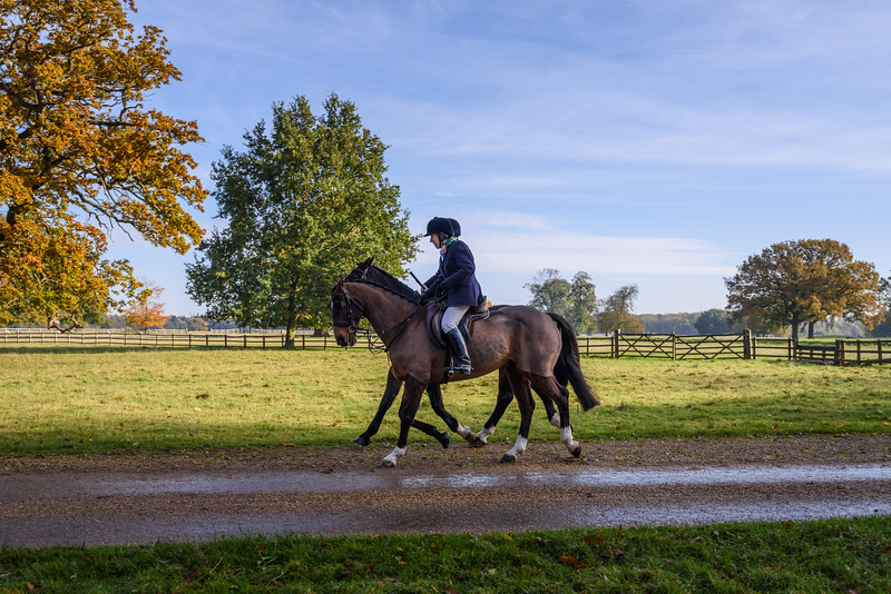 Fitzwilliam Opening meet Nov 2019-22-18.jpg