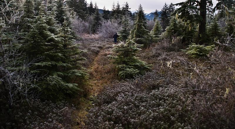 Pat in the frosty woods near Switzer Creek. November 9th, 2009.