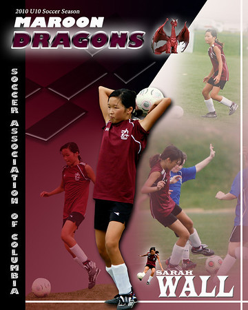 Howard County Youth Sports Posters