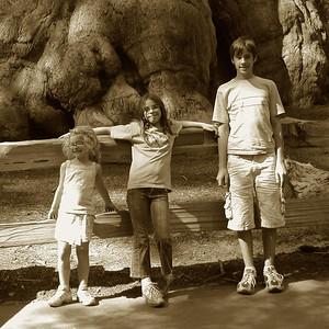 Kings Canyon, California - July 2006