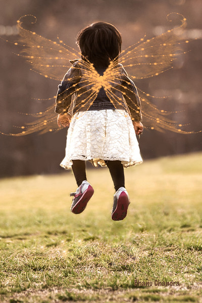 When I got the Wings ....