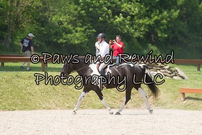 Schooling/Suitable Under Saddle