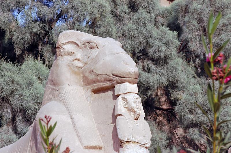 Karnak Temple 01.08.06 0007.jpg