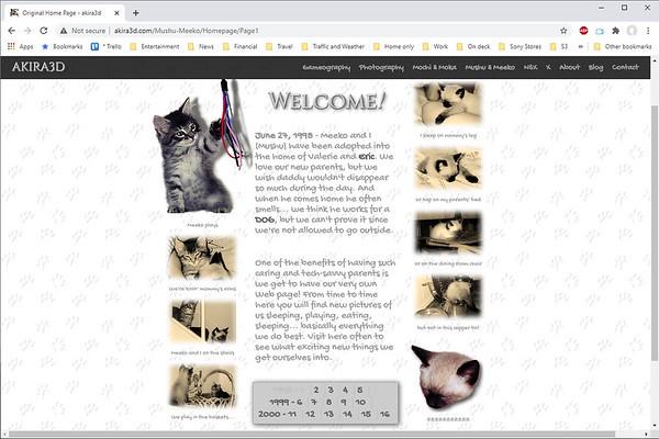 Original Home Page: 1998 to 2000