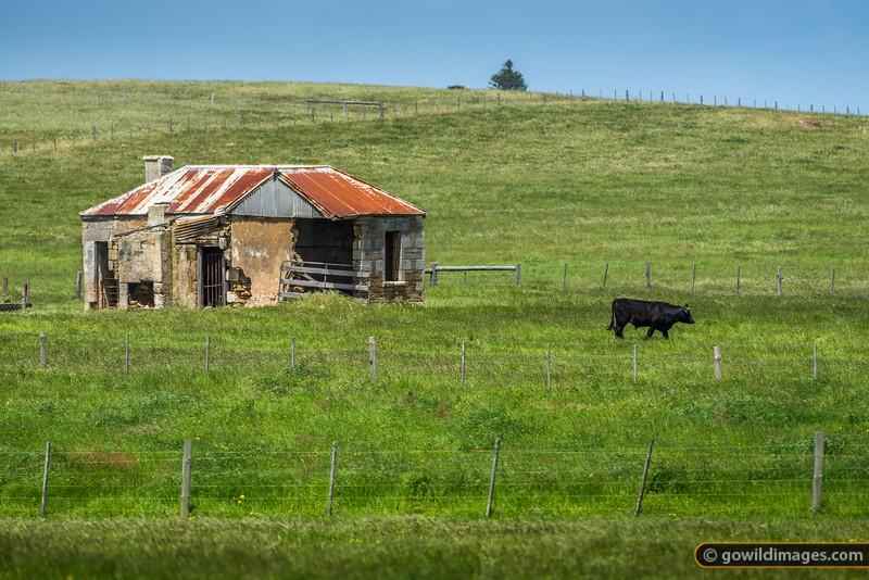 Weathered, historic farm shed on the Vic/SA border