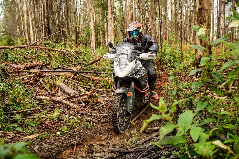 2019 KTM Australia Adventure Rallye (222).jpg