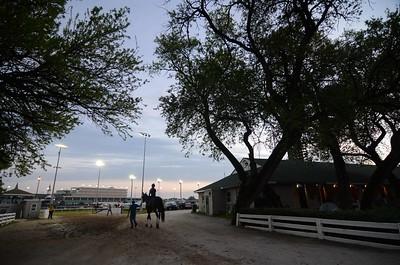 Dawn at the Downs 5-2