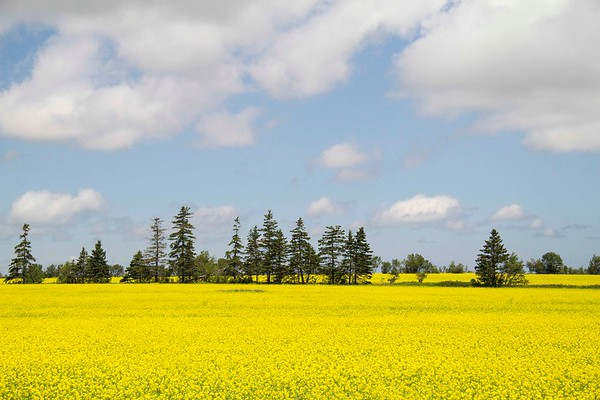 Prince Edward Island 2017