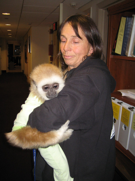 A MONKEY COMES TO VISIT!