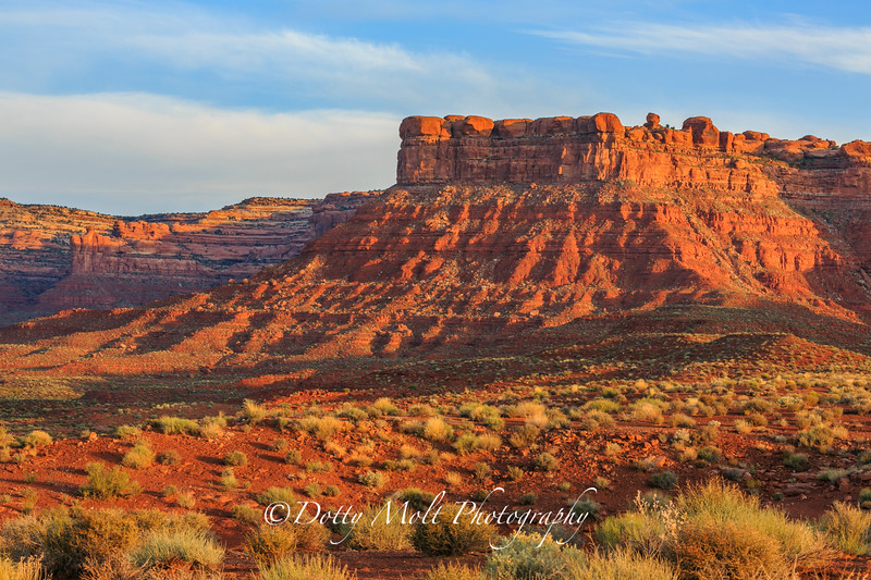 Monument Valley, Cedar Mesa, Valley of the Gods