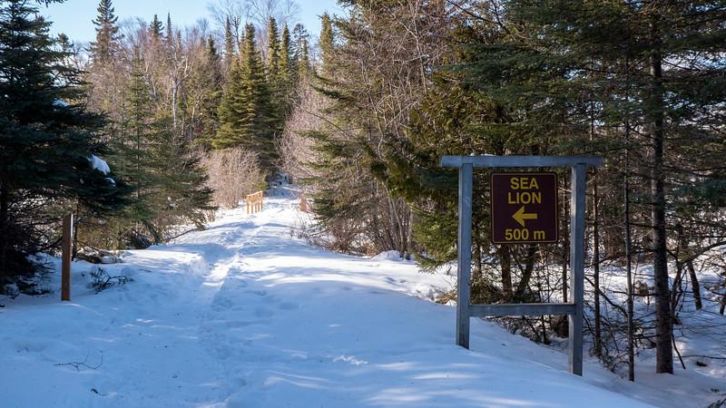 Sleeping-Giant-Provincial-Park-Winter-Hiking-06.jpg