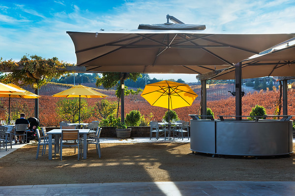 Lynmar Estate Winery 2019 Fall