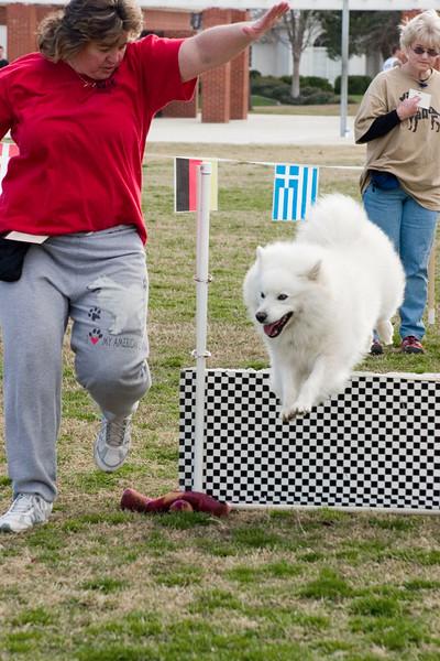 08 02-24 KPA dog olympics