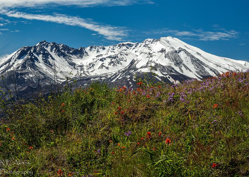 Mount St Helen 3865 (1 of 1).jpg