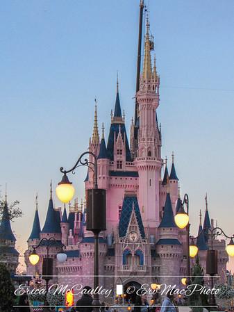 Disney and Universal Studios