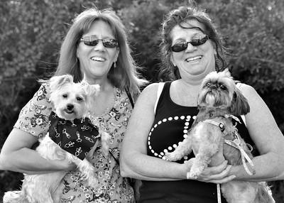 Dog Walk Event