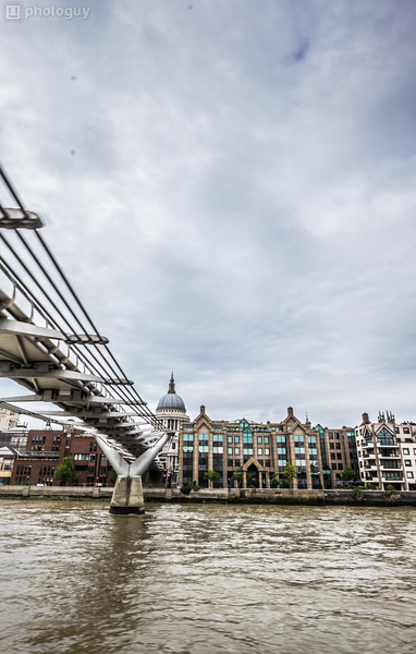 20140728_LION_LONDON (25 of 48)