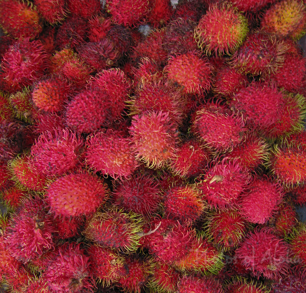 Rambutan, Nephelium lappaceum  Hawaii tropical fruits such as lychee and rambutan have become a multimillion-dollar industry.