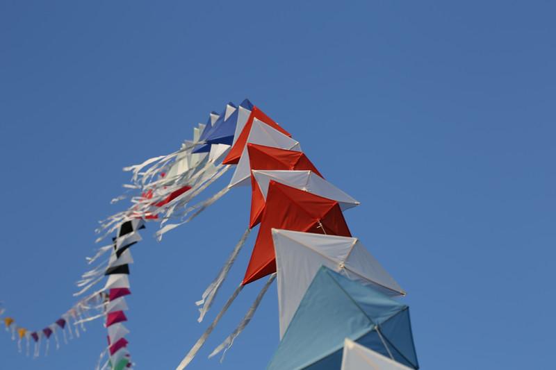 Kites April L L IMG_1133.jpg