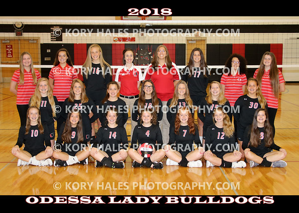2018 OMS Volleyball