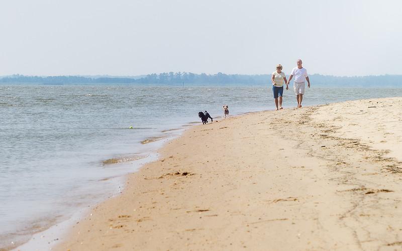 Beach Combers-.jpg