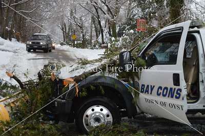 20140205 - Locust Valley - Tree Vs Truck