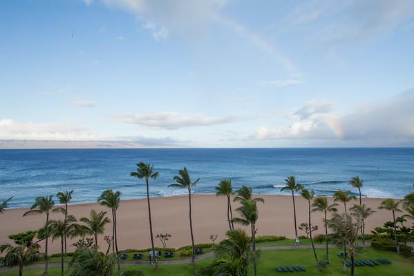 Maui (2016)