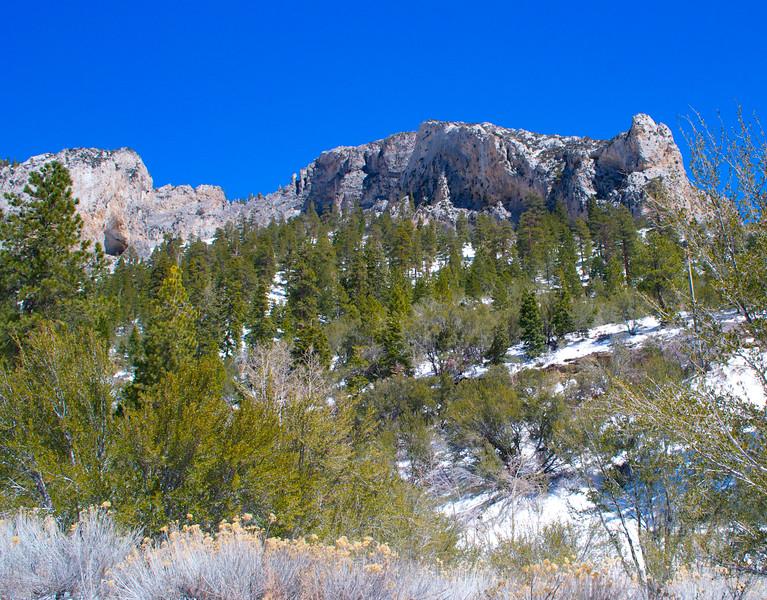 Mojave Desert & Red Rock Canyon, Vegas-DSC_2189-066.jpg