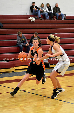 Homer vs Union City V Girls Basketball 2-18-2014