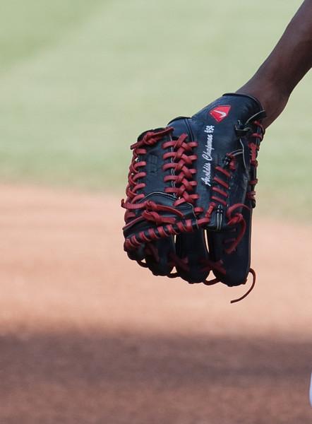 Chapman Glove.jpg
