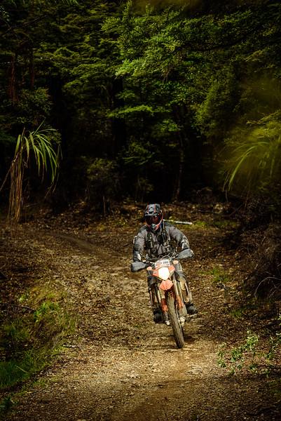 2019 KTM New Zealand Adventure Rallye (1338).jpg
