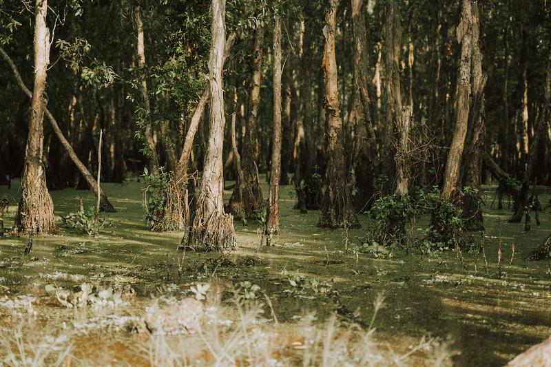 Tu Nguyen Wedding Mekong River Elopement Can Tho  - Southern Vietnam 12.jpg