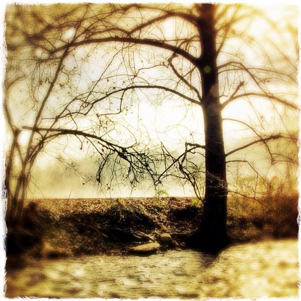2011-12-16_1324069890.jpg