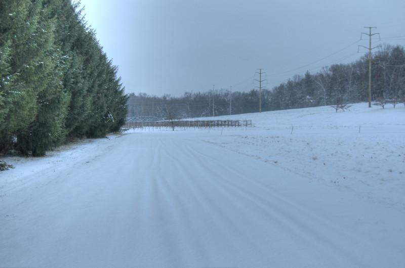 Easy Pickins Winter 000-1676780815-O.jpg