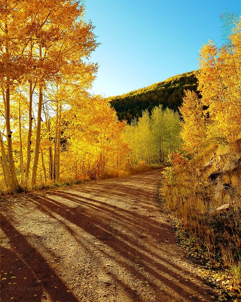 Colorado mtn road in autumn