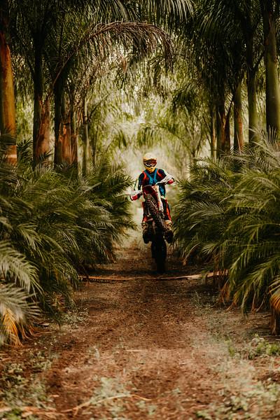 PalmsteadEdit-55.jpg
