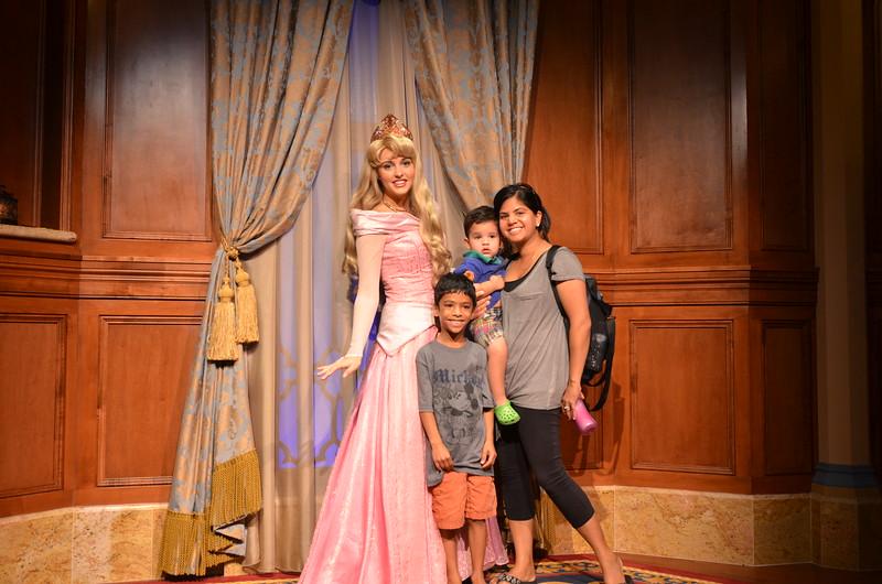 Disney 2013 297.jpg