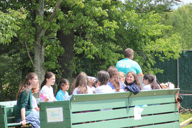 kars4kids_thezone_camp_girlsDivsion_activities_Horse&Buggy (7).JPG