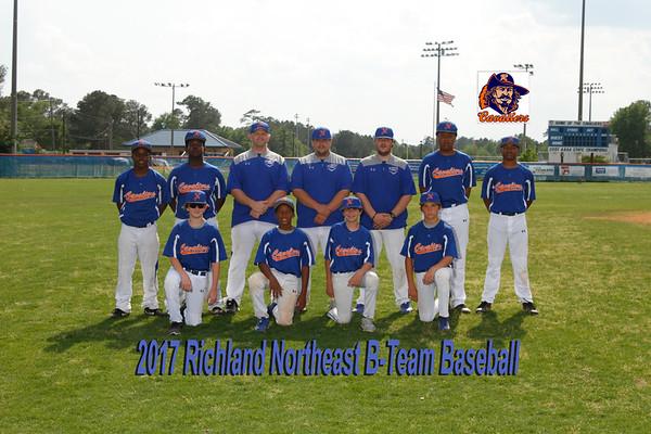 2017  B-Team  baseball