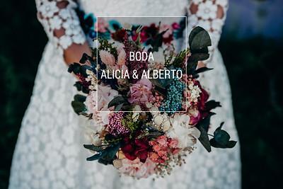 Alicia & Alberto