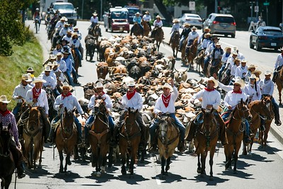 Photos: Cattle Drive kicks off Alameda County Fair. Will it be the last one?