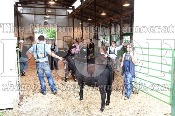 Beef Show 07-13-17