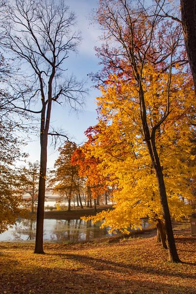 Fall-color-WingfootLakeSP-Nov11k.jpg