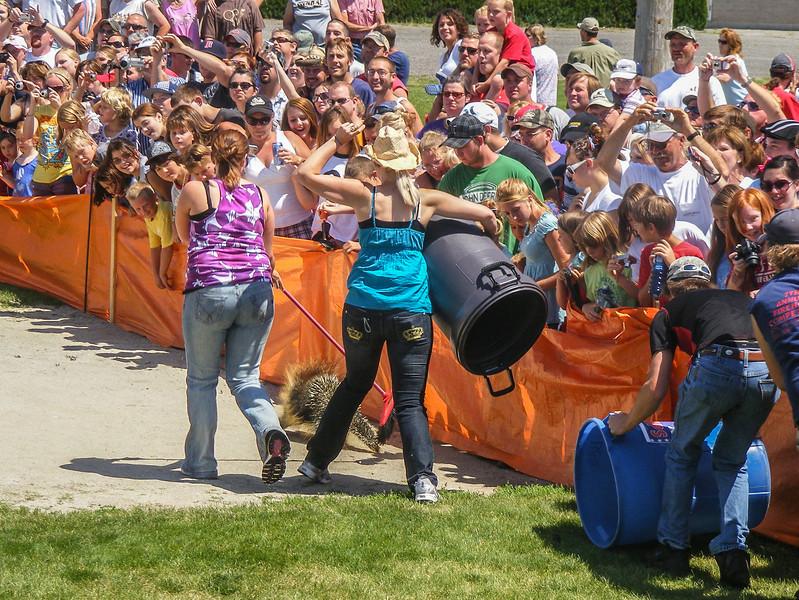 World Famous Porcupine Race