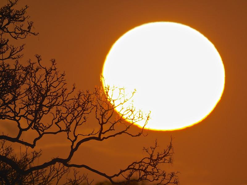 Sunset close up 5th April 2021